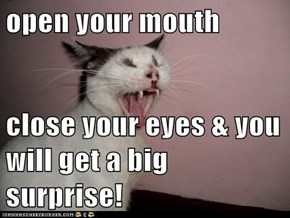 open your mouth   close your eyes & you will get a big surprise!