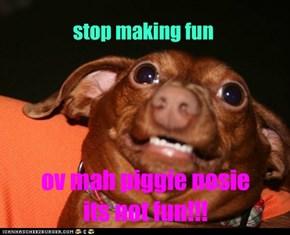 poor pig dog