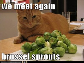 we meet again  brussel sprouts