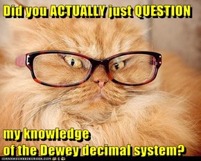 Did you ACTUALLY just QUESTION  my knowledge                                                of the Dewey decimal system?