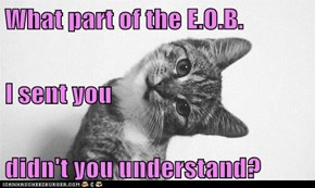 What part of the E.O.B. I sent you didn't you understand?