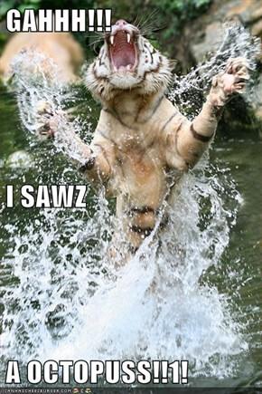 GAHHH!!! I SAWZ A OCTOPUSS!!1!