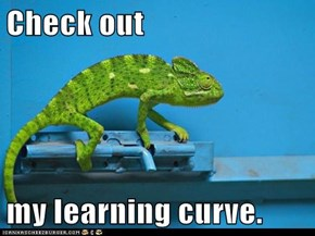 Check out   my learning curve.