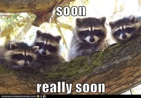 soon  really soon