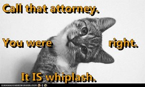 Call that attorney.  You were                  right.       It IS whiplash.