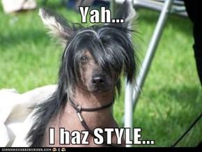 Yah...  I haz STYLE...