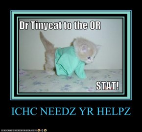 ICHC NEEDZ YR HELPZ