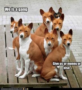 KKPS gangster
