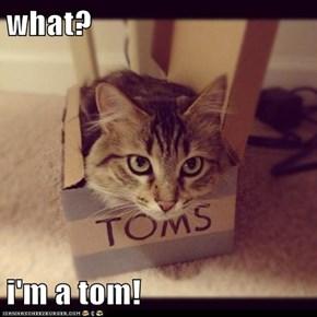 what?  i'm a tom!