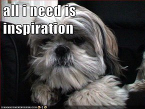 all i need is inspiration