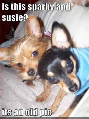 is this sparky and susie?   its an old pic