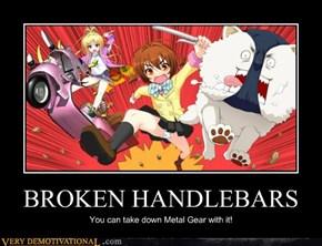 BROKEN HANDLEBARS