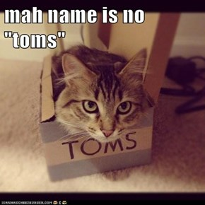 "mah name is no ""toms"""