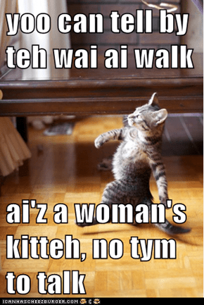 yoo can tell by teh wai ai walk  ai'z a woman's kitteh, no tym to talk