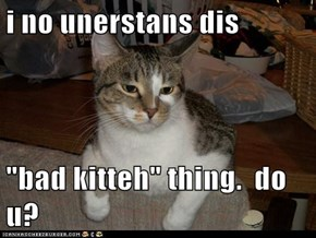 "i no unerstans dis  ""bad kitteh"" thing.  do u?"