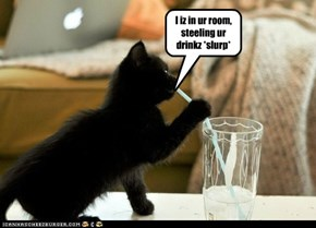 I iz in ur room, steeling ur drinkz *slurp*