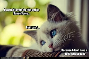 NO VOTES for YOU, First World Problem Kitteh!