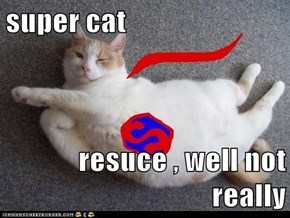 super cat   resuce , well not really