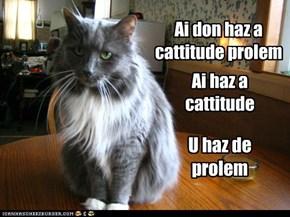 Cattitude problem