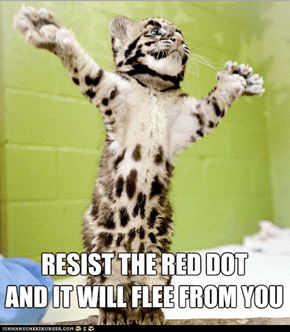 Preach It, Pastor Cat!