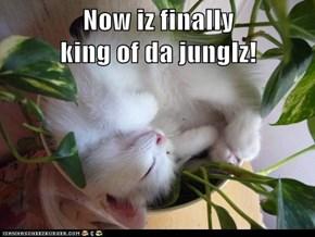 Now iz finally                             king of da junglz!