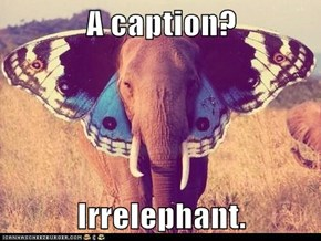 A caption?  Irrelephant.