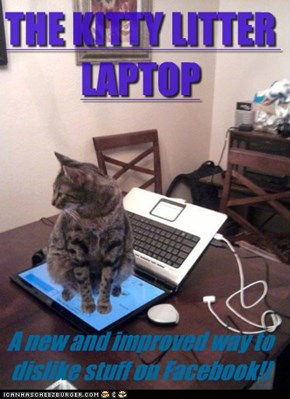 LOLcats: IN STORES NOW!