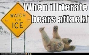 When illiterate bears attack!