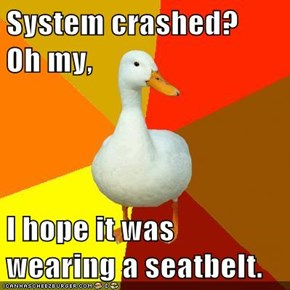 System crashed?    Oh my,  I hope it was wearing a seatbelt.