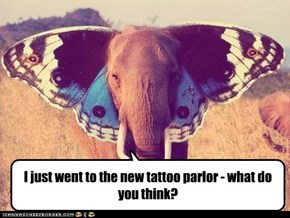 I just went to the new tattoo parlor - what do you think?