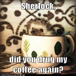 Sherlock,  did you drug my coffee again?
