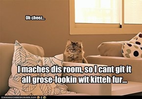 I maches dis room, so I cant git it all grose-lookin wit kitteh fur...