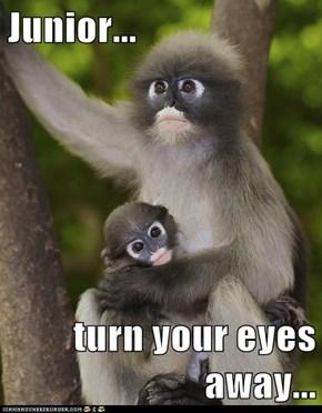 Junior...  turn your eyes away...