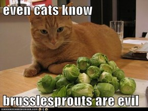 even cats know  brusslesprouts are evil