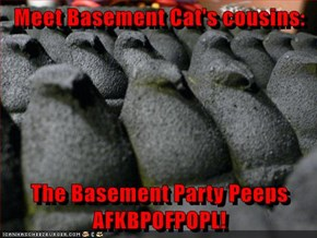 Meet Basement Cat's cousins:  The Basement Party Peeps AFKBPOFPOPL!