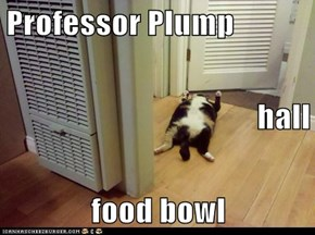 Professor Plump hall food bowl