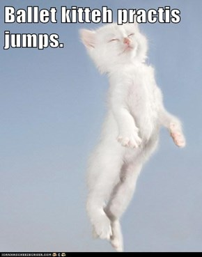 Ballet kitteh practis jumps.