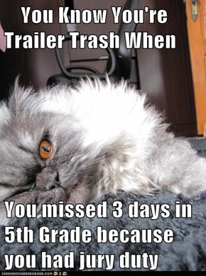 You Know You're Trailer Trash When  You missed 3 days in 5th Grade because you had jury duty