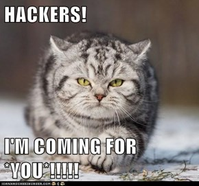 HACKERS!  I'M COMING FOR *YOU*!!!!!