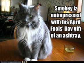 Smokey iz unimpressed with his April Fools' Day gift of an ashtray.