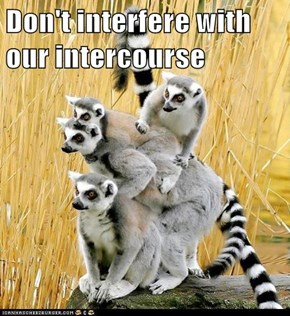 Don't interfere with our intercourse