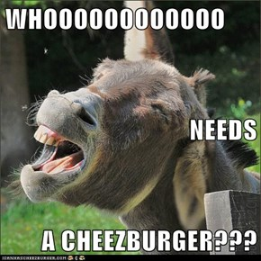 WHOOOOOOOOOOOO NEEDS A CHEEZBURGER???