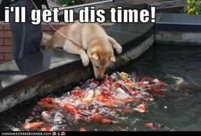i'll get u dis time!