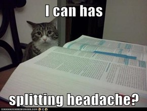 I can has  splitting headache?