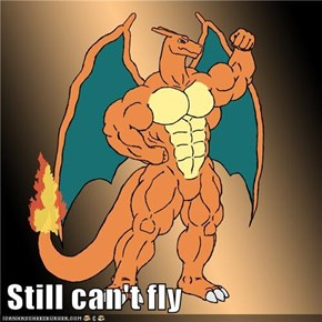 Still can't fly