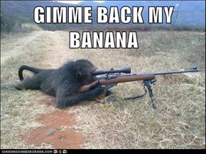 GIMME BACK MY BANANA