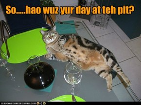 Kitteh's day wuz nawt so bad!