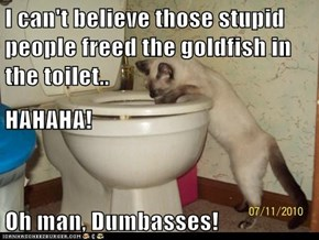 I can't believe those stupid people freed the goldfish in the toilet.. HAHAHA! Oh man, Dumbasses!