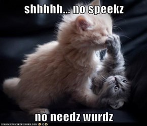 shhhhh... no speekz  no needz wurdz