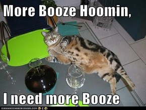 More Booze Hoomin,  I need more Booze